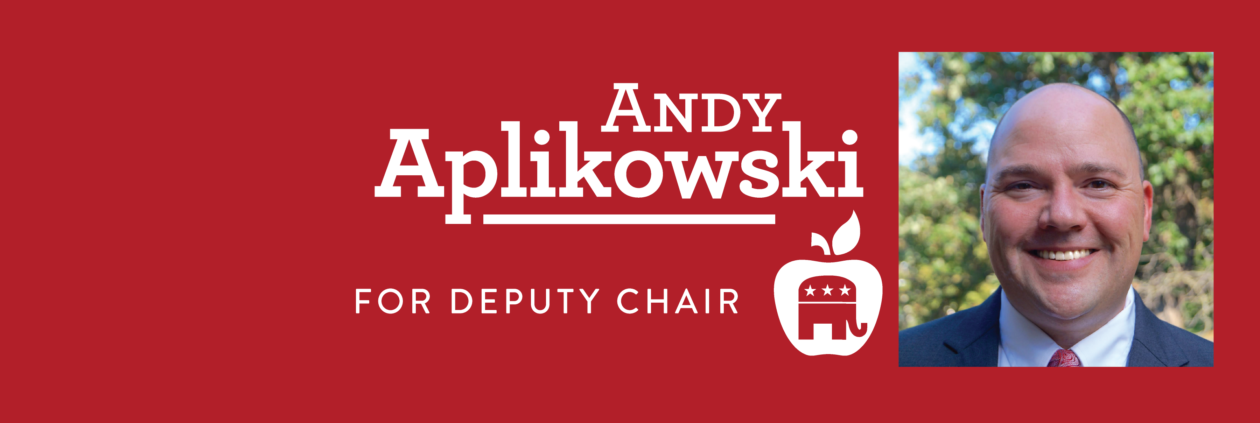 Andy Aplikowski for Deputy Chair