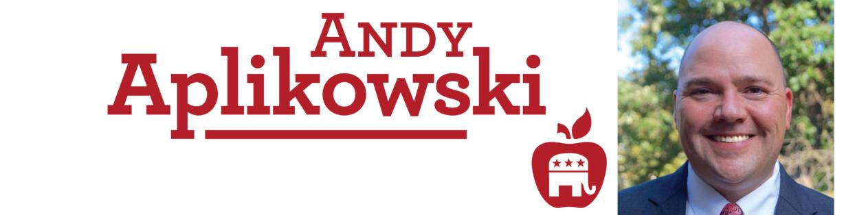 Andy Aplikowski for Deputy Chair